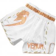 Short Muay Thai Venum Giant white/gold